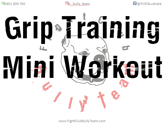 grip training for combat sports